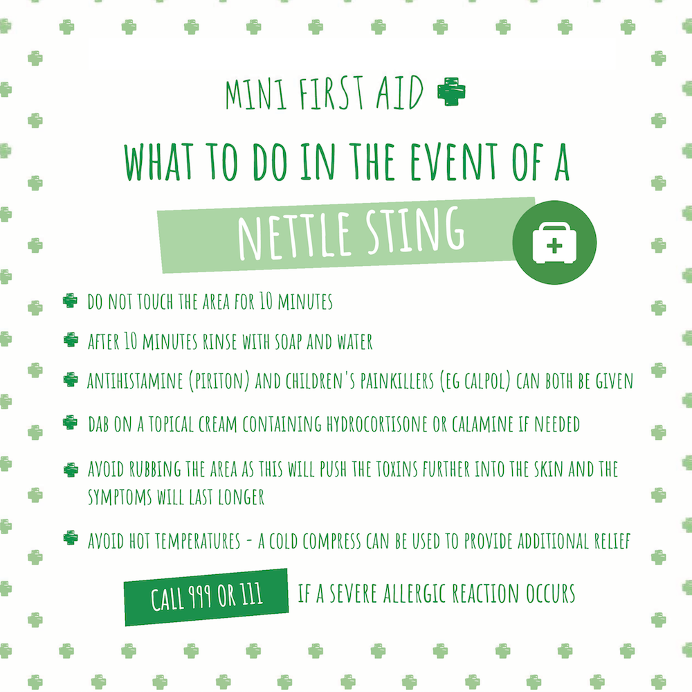 How To Treat Nettle Stings In Babies And Children
