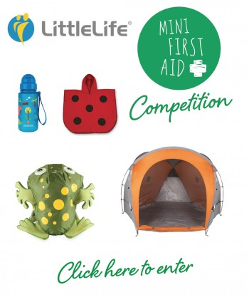 Little Life Competition